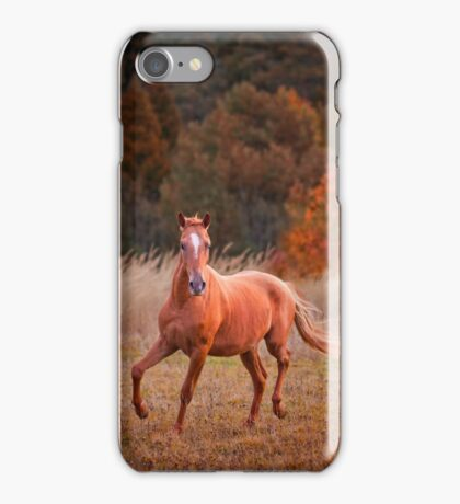 The Russian Don horse iPhone Case/Skin