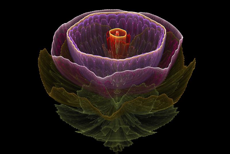 Bloom by Leoni Mullett