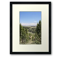 Sonora Pass Framed Print