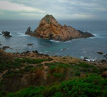 Sugar Loaf rock by Peter Hodgson