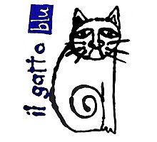 il gatto blu Photographic Print