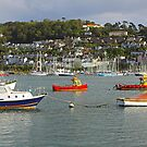 Dartmouth Harbour by Hertsman
