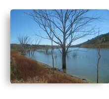Dam in western NSW Canvas Print