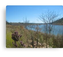 Dam in western NSW ~ 3 Canvas Print