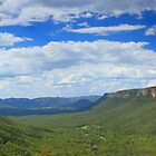 Lithgow valley by Cameron O'Neill