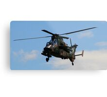 Flying Tiger Metal Print