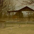 Sunfaded barn by Nicki Kenyon