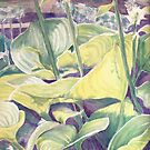 Shake Rag Hostas by Carolyn Bishop