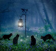 The Witches Cats by Celtic Mystery