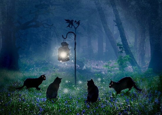 The Witches Cats by Angie Latham