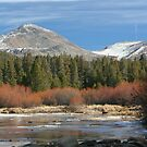 Tuolumne River 1 by Chris Clarke