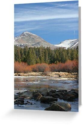 Tuolumne River 1 by Chris Clarke