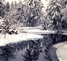 Winter Wonderland by buddykfa