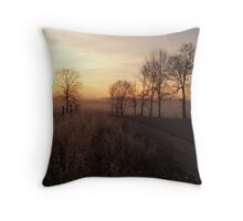 secluded view Throw Pillow
