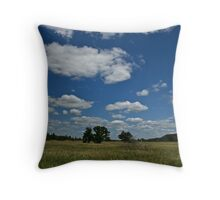 wisconsin plains Throw Pillow