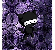 Ninja Kitty Photographic Print