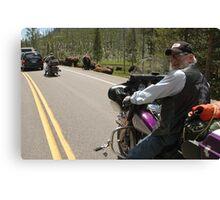 Yellowstone Bikers and Buffalo Canvas Print