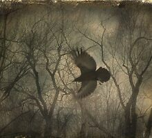 Forest Raven by gothicolors