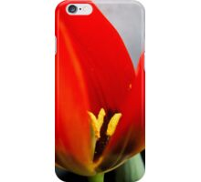 Anatomy of a Tulip: The Slip iPhone Case/Skin
