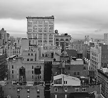 Gray Day in January - New York, NY by Judith Oppenheimer