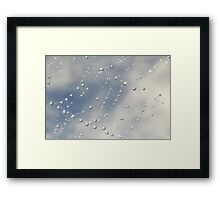 spiders web... Framed Print