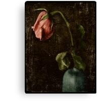 wither away Canvas Print