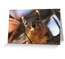Hey! You're late with my snack! Greeting Card