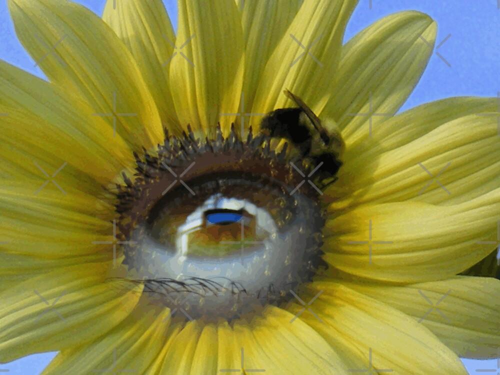 Bright Eyes by Brittany Kinney