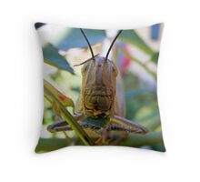 Hungry, Hungry Hopper Throw Pillow