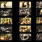 Boxing Storyboards by Evan F.E. Lole