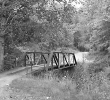 Bridges Can Take Us Anywhere by Liz Mardis