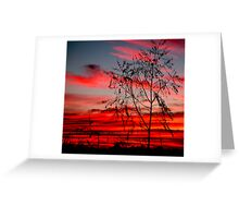 Templestowe Sunset Greeting Card