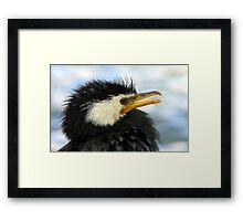 Does It Make Any Difference! - Shag/Cormorant - Queenstown NZ Framed Print