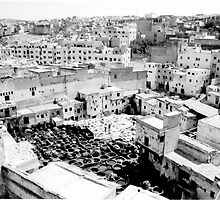 Fez Tanneries, Morocco by noddybuns