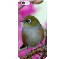 Christmas Blessings From Nature- Silvereye - NZ - Christmas card  iPhone Case/Skin