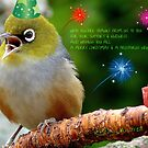 Merry Christmas Bubbler's! - Silver-Eye - NZ by AndreaEL