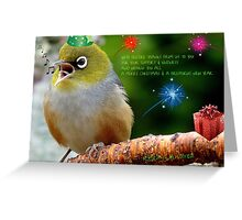 Merry Christmas Bubbler's! - Silver-Eye - NZ Greeting Card