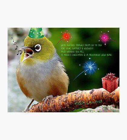 Merry Christmas Bubbler's! - Silver-Eye - NZ Photographic Print