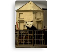 Rat Trap Canvas Print