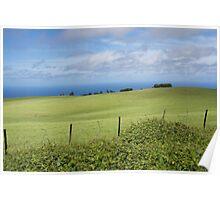 Kohala countryside Poster