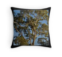 just coz i love eucalypts  :-) Throw Pillow