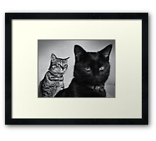 { we're going to take over the world } Framed Print