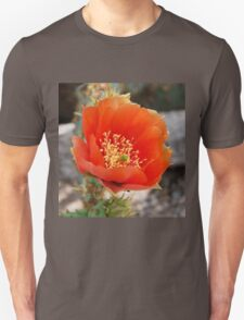 Orange Cactus Bloom T-Shirt