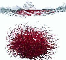 Rambutan Splash 2 by Alexander Gitlits