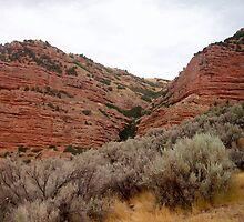 Echo Canyon, Utah by Naenod