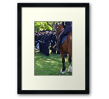 Gallant Steed III Framed Print
