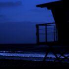 Midnight by Kimberly Johnson
