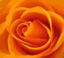 orange rose_V by mimbravastudio