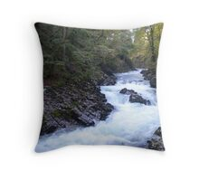 Vintgar Gorge, Slovenia Throw Pillow