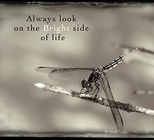 Always look at the bright side of life by Ilze Lucero